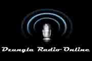 Džungla Radio